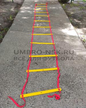 Координационная лестница 12 ступеней У792
