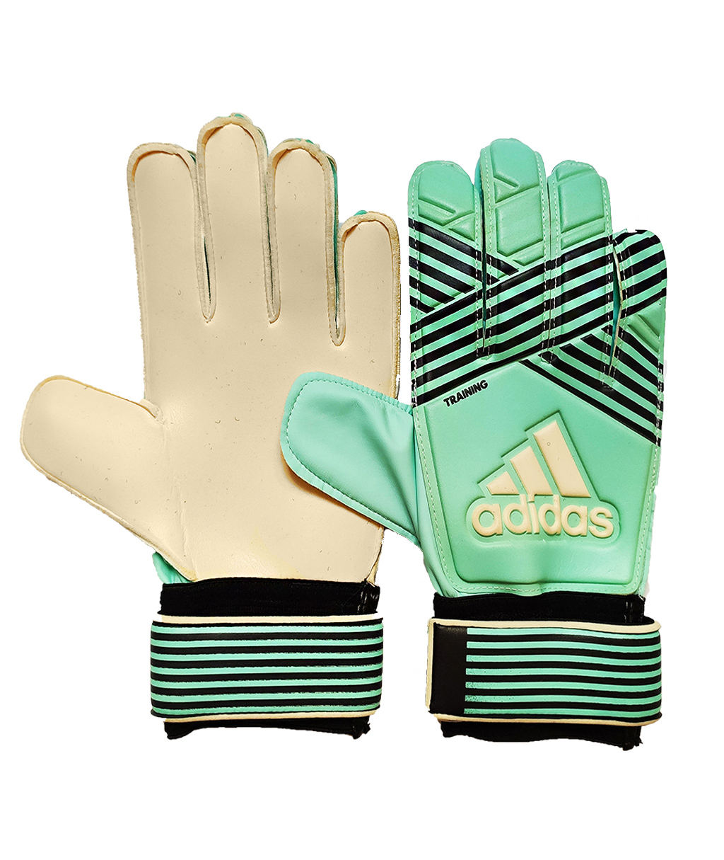 Купить Вратарские перчатки Adidas ACE Training BQ4588