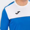 Игровая футболка Joma Winner 100946.702